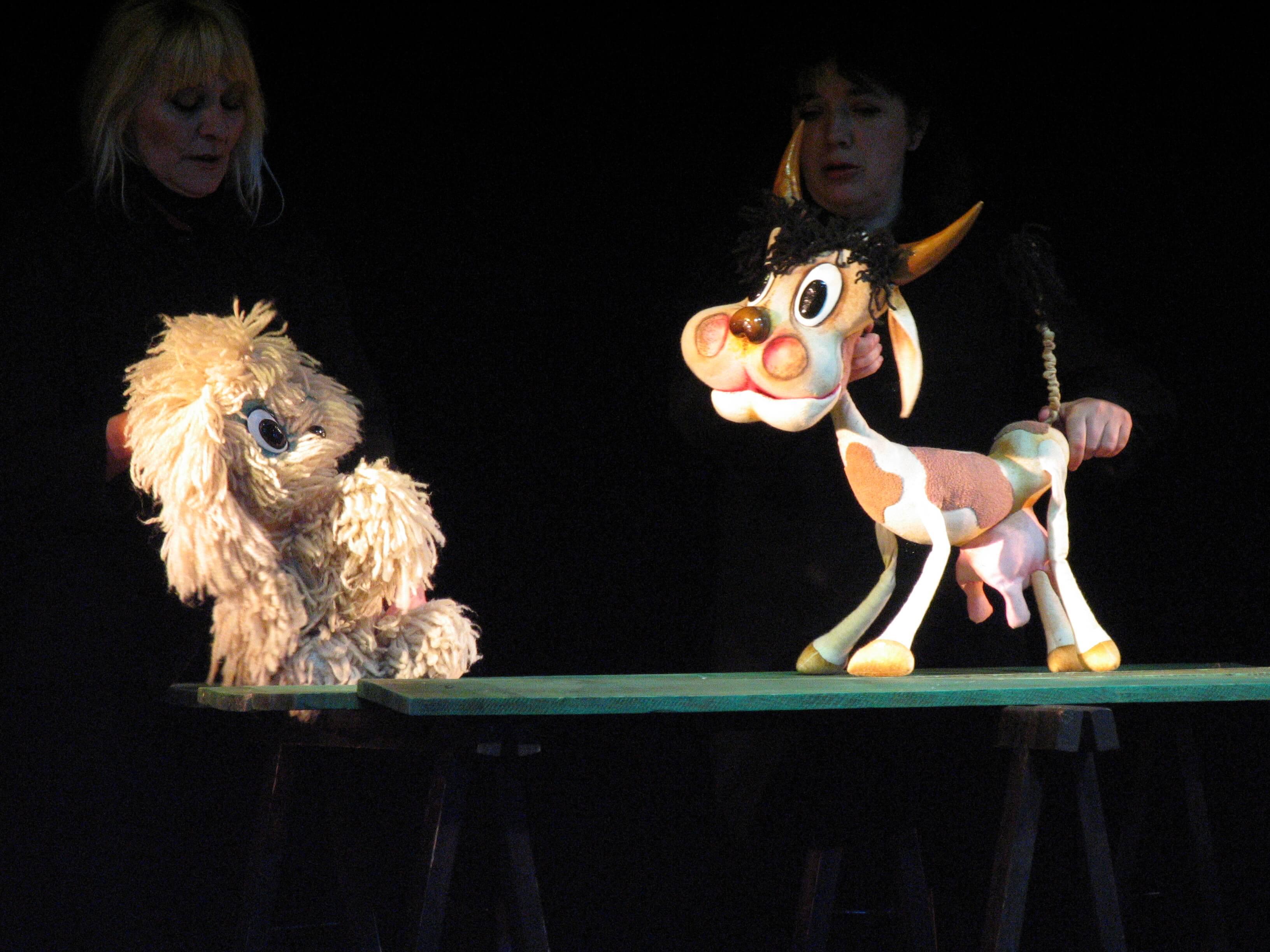 Кучето което 8